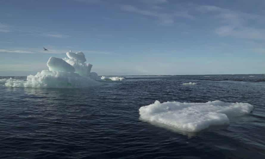 A study has found microplastics in 96 of 97 sea water samples taken from across the polar region.