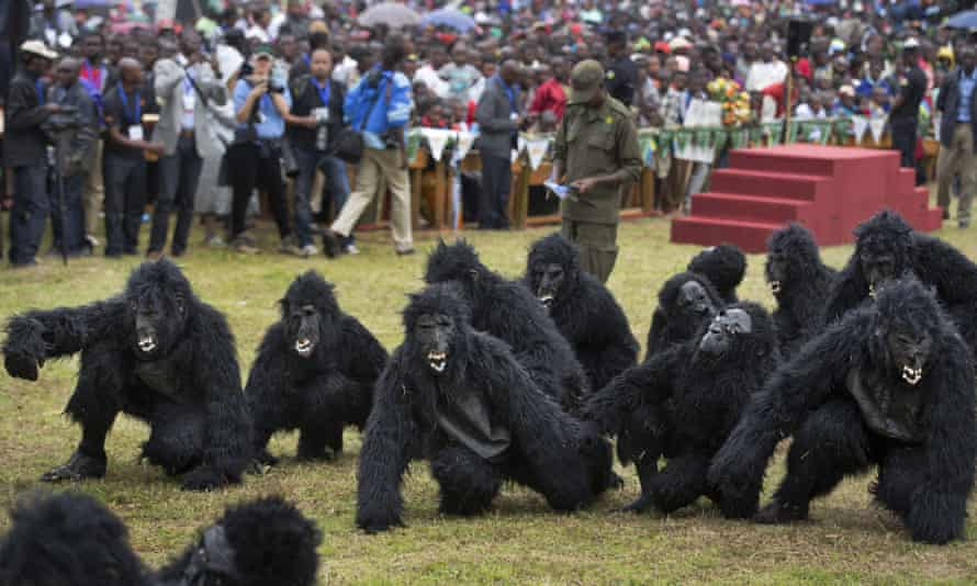 Two dozen people dressed in gorilla suits took part in the ceremony