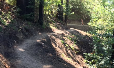 A new trail giving foot access to a cut-off part of Big Sur.