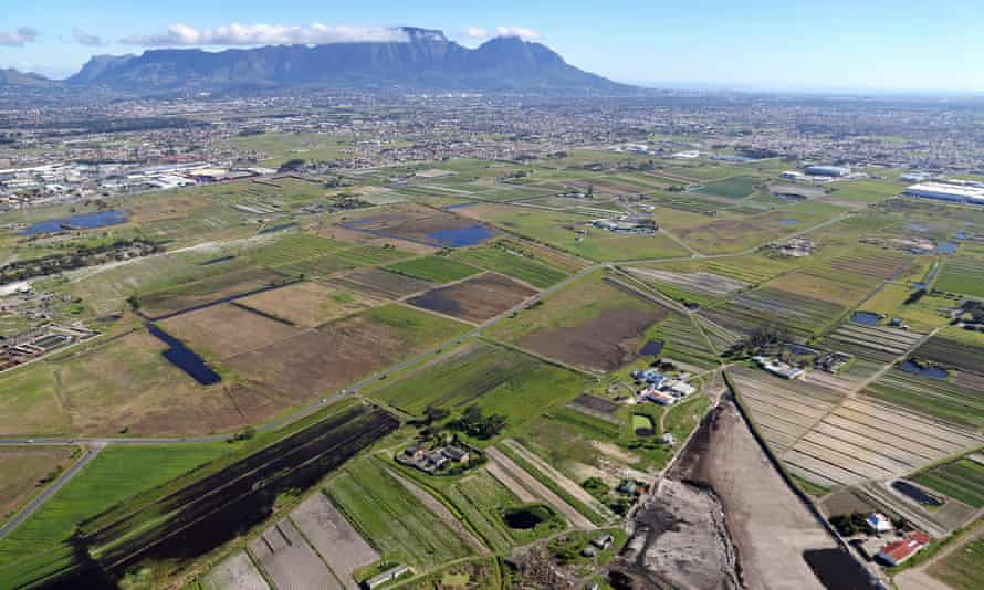 Aerial view of the Philippi Horticultural Area.