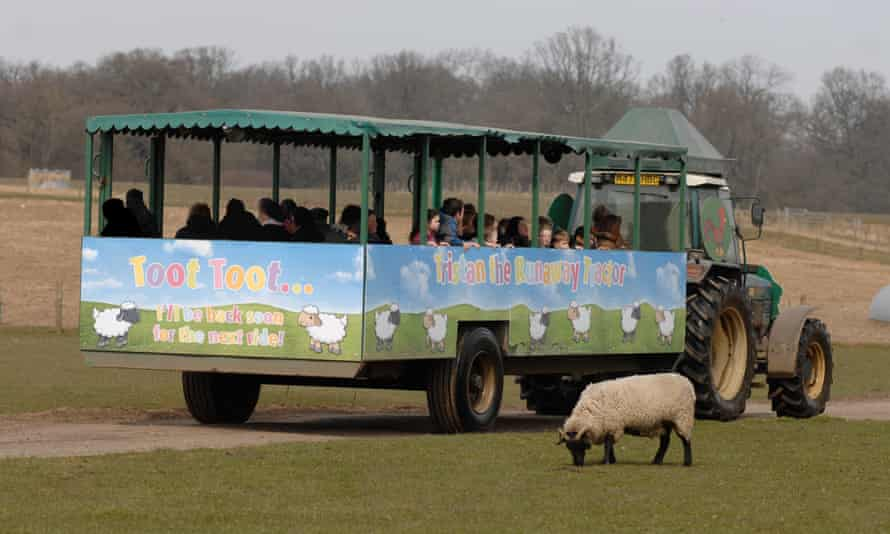 Tristan the Tractor tours the farm at Willows Activity Farm, Hertfordshire