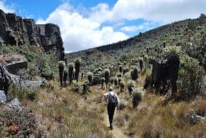 Walking in the Andes' Páramo de Ocetá.
