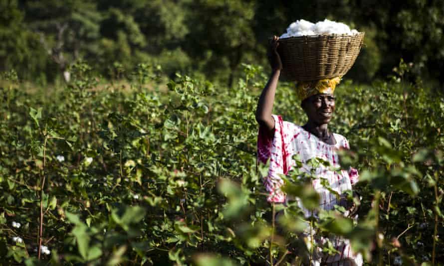 Mali Fairtrade cotton farmer