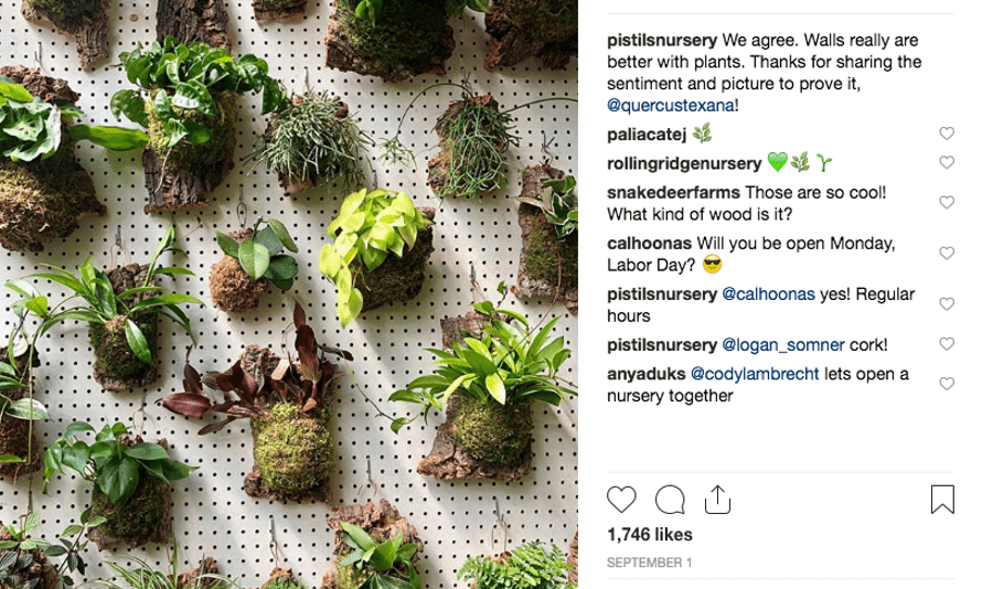 Green walls: @pistilsnursery.