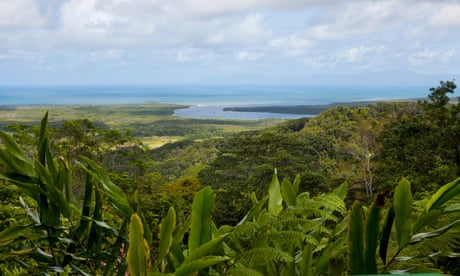 Climate change damage to Queensland's world heritage rainforest 'as bad as Great Barrier Reef'