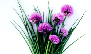 Full of flavour: as all alliums are closely related, they produce most of the same flavour compounds.