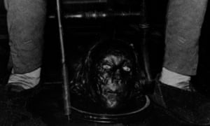 Close up of Bentham's head