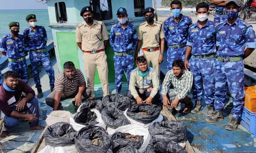 Lakshadweep marine wildlife protection force with a seizure of 486 dead sea cucumbers in March 2021.