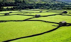 Fields near Gunnerside, Swaledale, North Yorkshire Dales