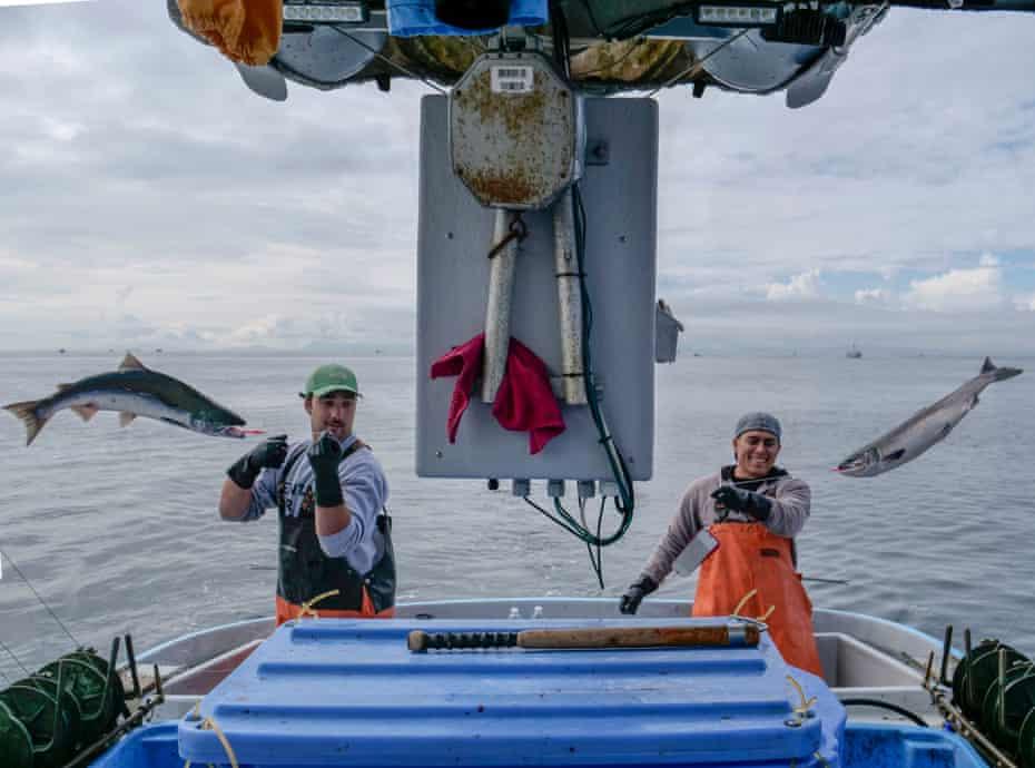 Fishing, Ocean Organic