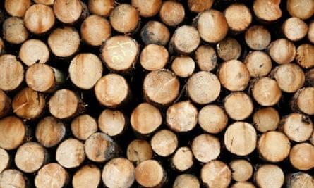 Timber at a British sawmill