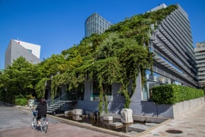 The terraced 'Step Garden' of the Acros Fukuoka Prefectural Hall in Japan is designed to be used by the public as park space, as well as helping to lower temperatures in the surrounding area.