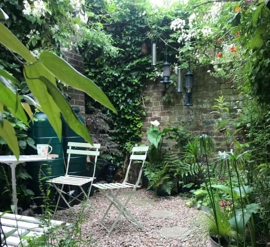 Judith's Shady Garden