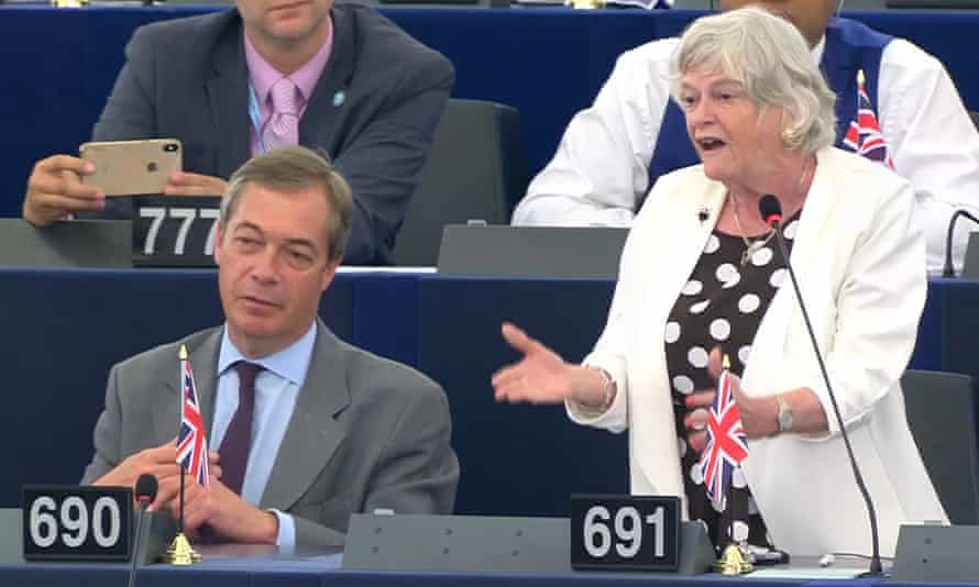 Ann Widdecombe gives a speech to the European parliament alongside the Brexit party leader Nigel Farage.