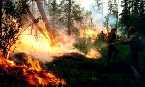 Wildfire in Russia