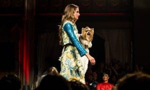 Models, human and canine, walk the runway.