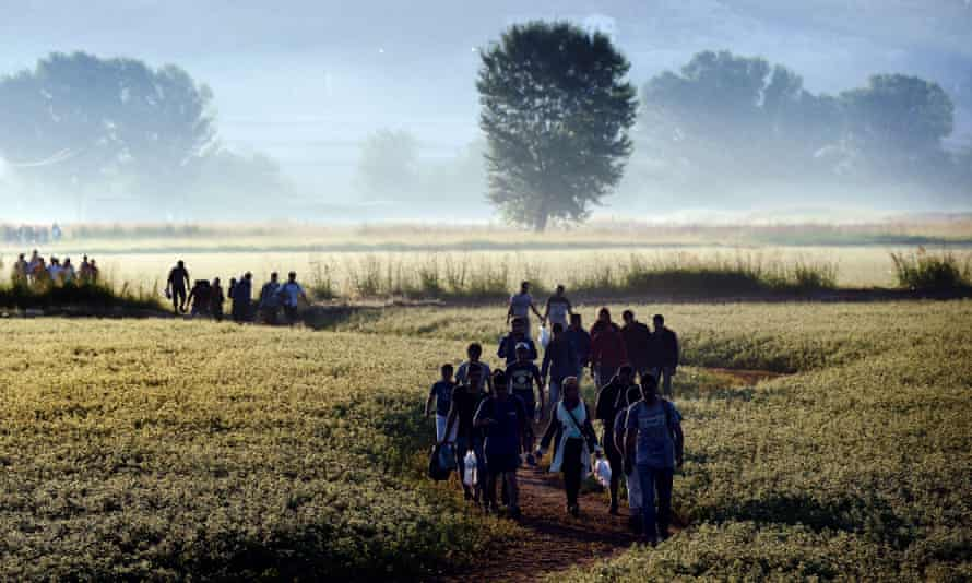 Syrian refugees and migrants walk in a field to cross the border between Greece and F.Y.R. of Macedonia