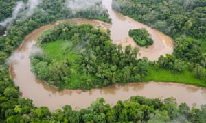 Tiputini River and rainforest in Yasuni national park in Ecuador's Amazon forest.