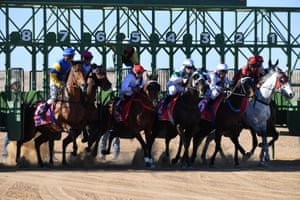 Horses surge from the stalls at the start of race six