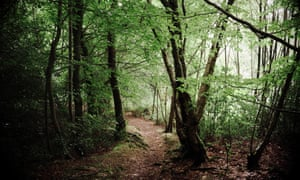 National Trust Criticised For Evicting A Forest School From Its