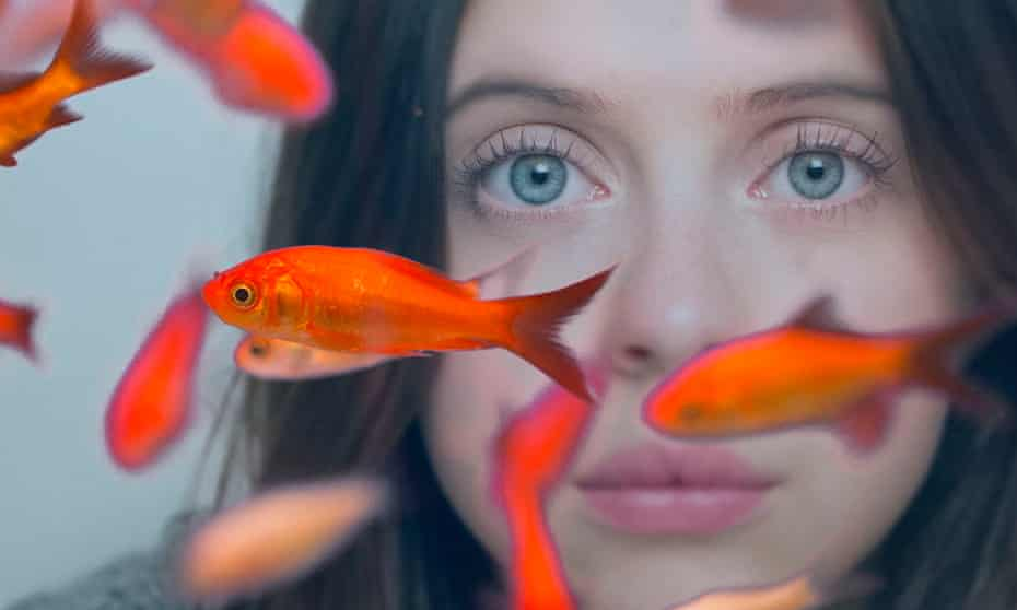 'Powley eschews adorkable by offering scene after scene of what acting specialists call good choices' … Carrie Pilby