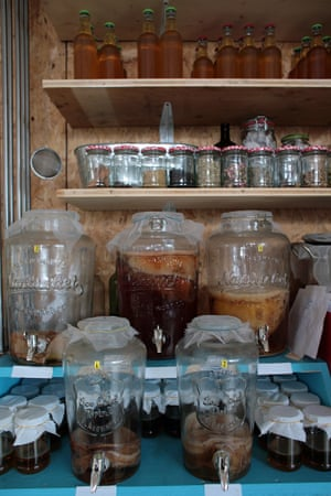 Jars of kombucha, a fermented, eco-friendly tea, and the basis of one of the Green Lab startups.