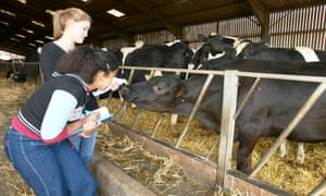 Agricultural university courses have been among the fastest-growing in recent years.