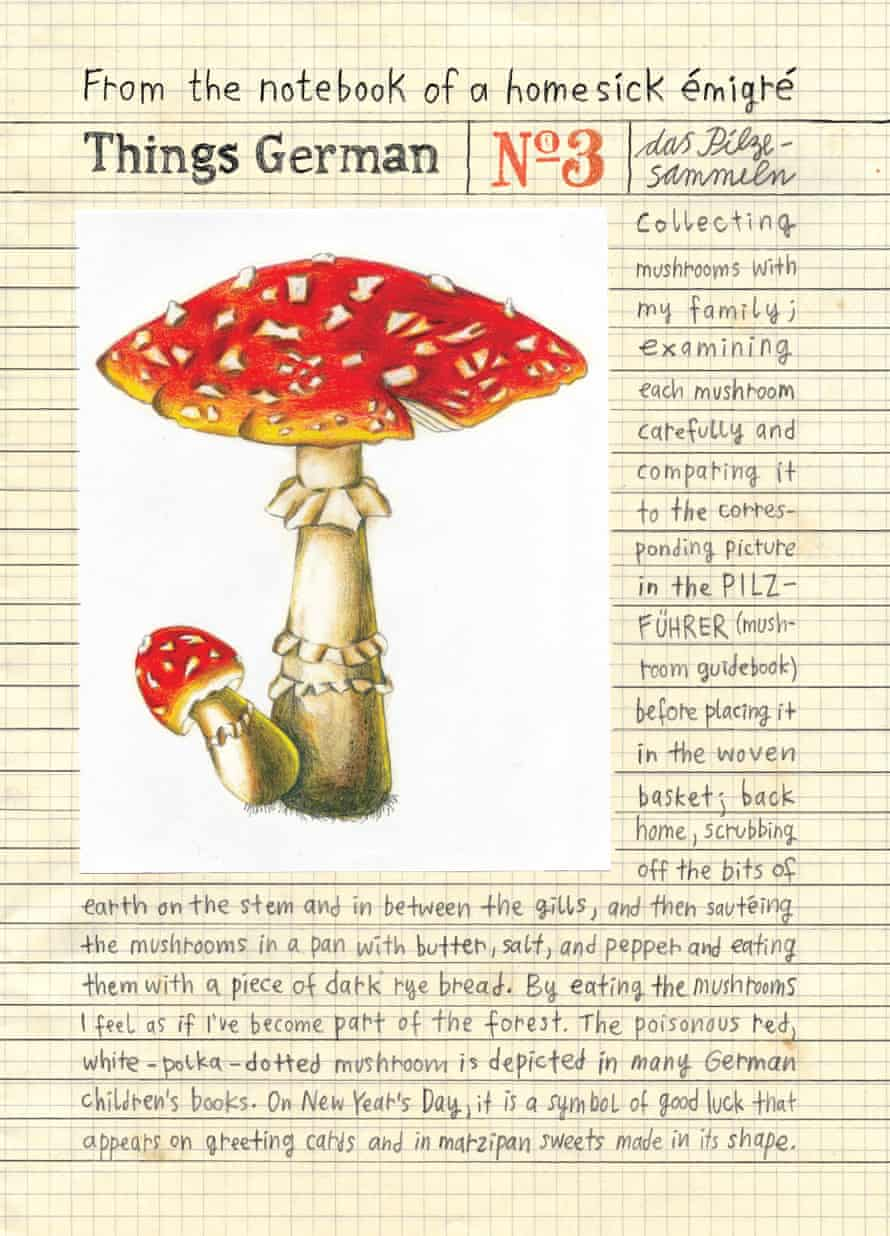 The toxic fly agaric in Heimat.