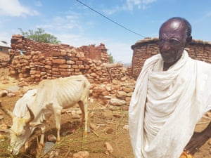In Ethiopia, Tadesse, 73, inspects his severely malnourished stock. During his country's worst drought in 50 years, he has lost 15 sheep and two cows. Ethiopia's farmers have lost a million head of cattle and 90% of their crops. An estimated 430,000 children are facing malnutrition this year