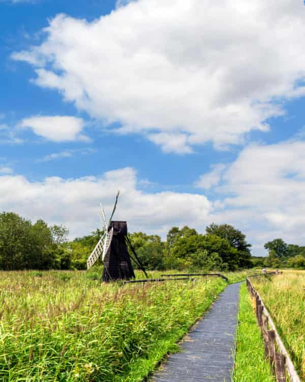 Flat out: the Lodes Way trail through Wicken Fen, a wetland nature reserve in Cambridgeshire.
