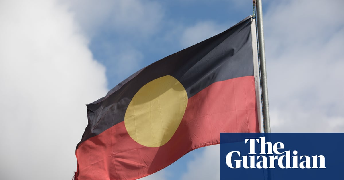 Government could buy Aboriginal flag copyright to settle dispute, lawyer says