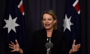 Health minister Sussan Ley speaks during a press conference at Parliament House in Canberra.