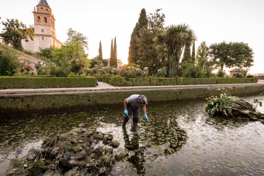 A scene in the Alhambra