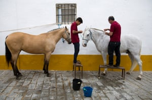 Grooms braid the manes of horses waiting to take part in the parade through town