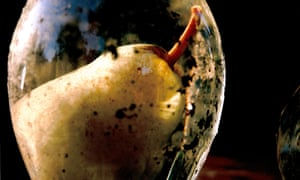 Prison Pair, Tacita Dean's film of two pears decaying in schnapps, will feature in the National Gallery exhibition.