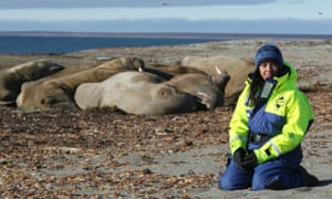 Liz Bonnin with walruses on the Norwegian archipelago of Svalbard for the filming of Drowning in Plastic.