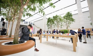 "The upgraded Apple store in London features trees in the ""Genius Grove"" and has the goal of being a space for people to just hang out in."