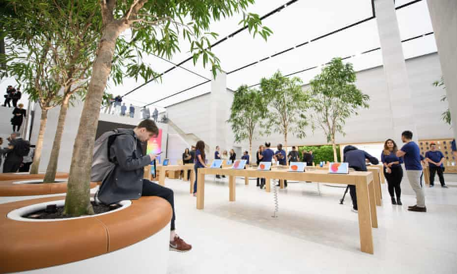 """The upgraded Apple store in London features trees in the """"Genius Grove"""" and has the goal of being a space for people to just hang out in."""
