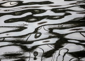A seagull swims across the reflection of a bride on the rippled surface of the river Main, Frankfurt am Main, Germany