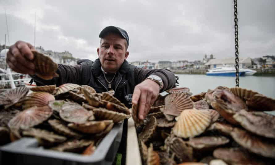 A French fisherman unloads shellfish in Granville harbour last week.