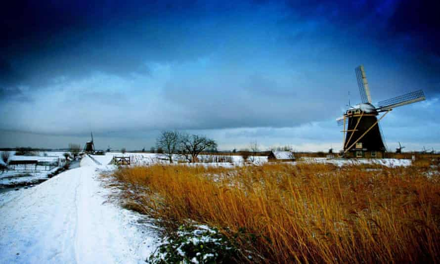 Overnight snowfall gives a fresh look to a Dutch scene of windmills on a flat landscape in Kinderdijk.