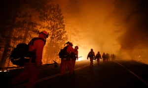 Tinder dry: changing climate has seen an upturn in forest fires around the world.