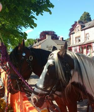 At the Appleby horse fair.