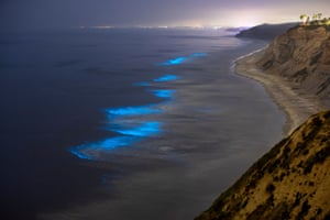 Blacks Beach, La Jolla, San Diego, California