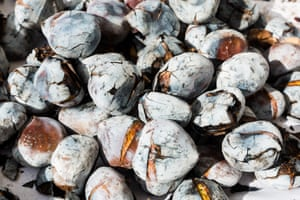 Close up image of roasted chestnuts (castanhas assadas) from a stall in Lisbon, Portugal