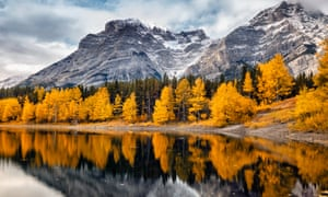 Lake with reflection of mountains and yellow trees at Kananaskis National Park, Canada.