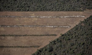 Deforestation and soya in the Chaco forest in Salta province, Argentina
