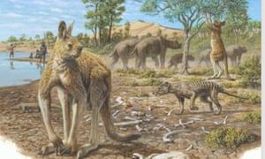 Giant macropod Procoptodon goliah
