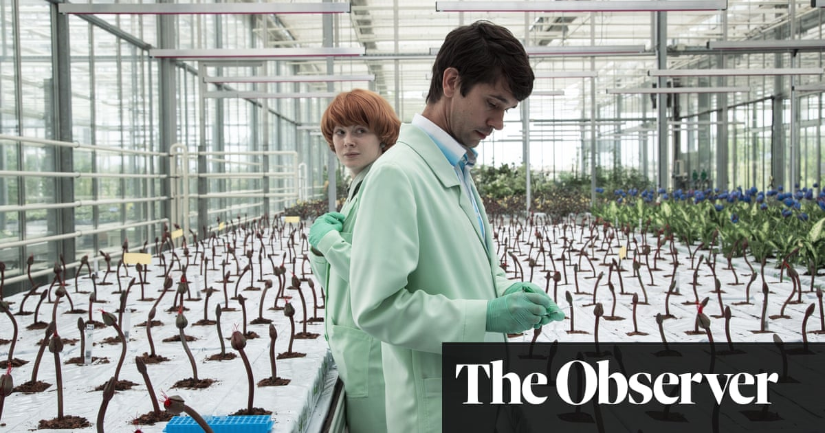 It's 'Day of the Triffids' for today's Britain, but with antidepressants as the monster