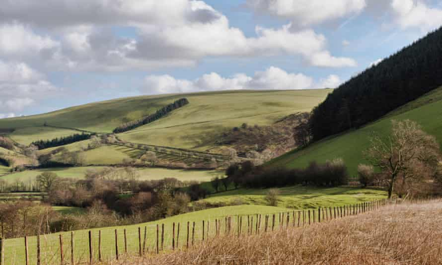 Pastoral visions … the landscape near New Radnor, Powys.